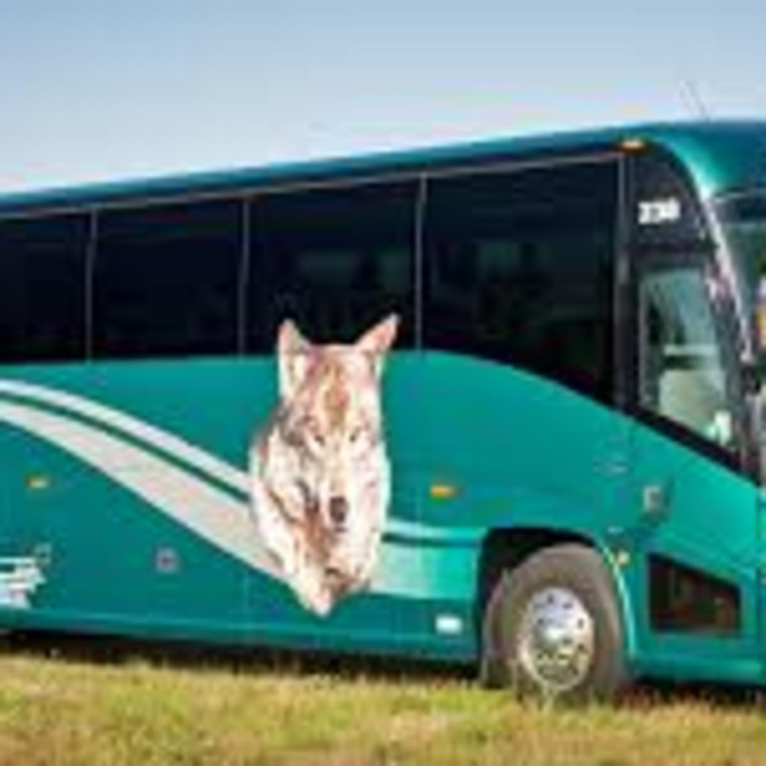 Wolf's Bus Line