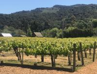 Folktale Vineyards
