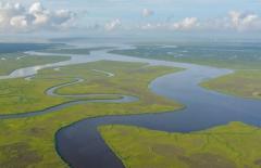 Marsh aerial
