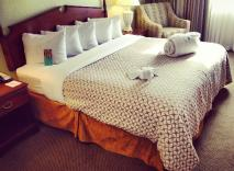Comfy Beds to Lay Your Head at the Embassy Suites Tampa Airport Westshore