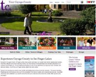 cayuga-county-website.JPG