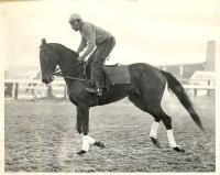 African American Jockey