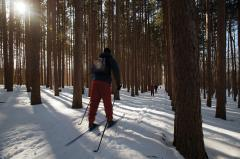 Photo caption: Cross-country skiers traverse the wilderness at Cumming Nature Center in Naples, NY. Photo credit: Darren McGee, NYS Dept. of Economic Development