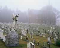 Lakeview Cemetery in Seattle on a foggy morning