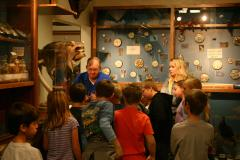 Teaching at the Museum