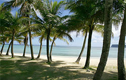 ypao beach park