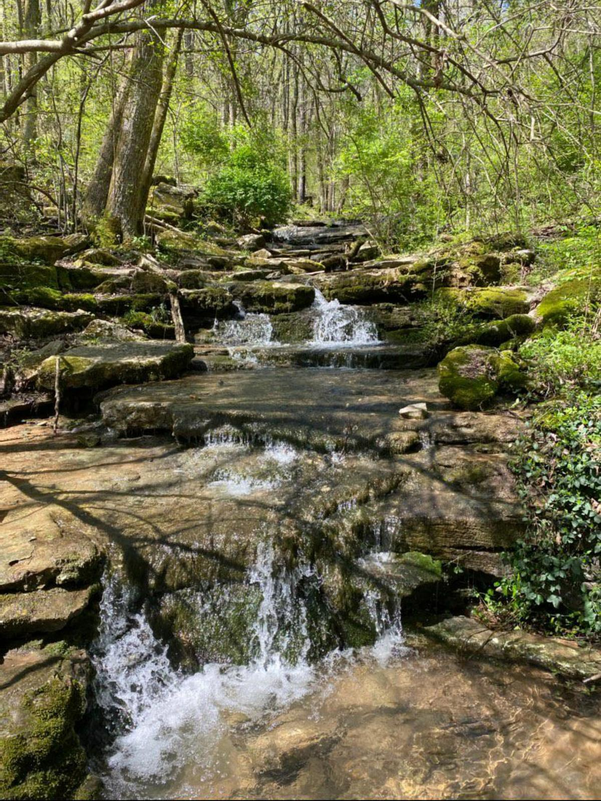 Waterfalls in Dallas Fanning Nature Preserve