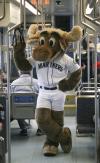 Mariners Game Night: Mariners Moose