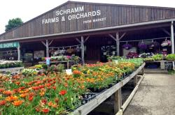 Schramm Farms & Orchards