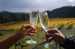 RainSong-Vineyard-Champagne-Romance