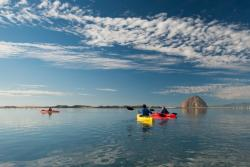 Morro Bay Kayak