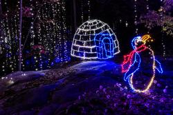 RC Enchanted Garden of Lights Pengin