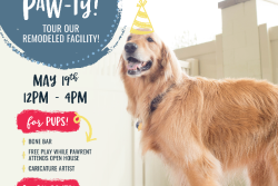 Camp Bow Wow Fort Collins Grand Re-Opening/Open House