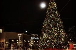 Foothills Annual Holiday Tree Lighting