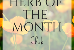 Herb of the Month Club - May