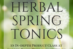 Gentle Detox with Herbal Spring Tonics