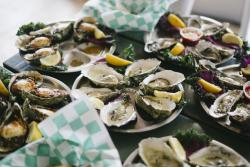 Plates of oysters at a restaurant in SLO CAL
