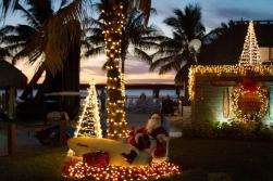 Holidays at TTs Tiki