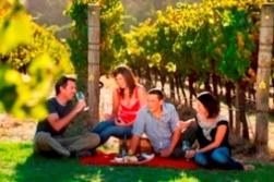 Australia's South West- Marg River Winery 2008 (2)