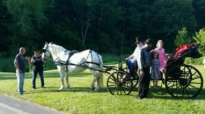 Carriage Rides at Gabis