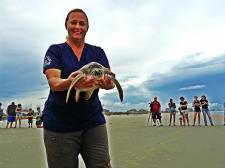 Sea Turtle Marine Science Center employee holding a sea turtle