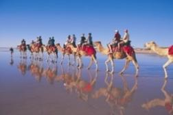 Cable Beach Camel Trek (2)
