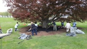 I Love My Park Day Volunteer Event on Saturday, May 5th, 10am – 3pm at Staatsburgh State Historic Site