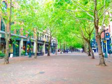 See Pioneer Square in downtown Seattle during the Spring