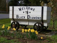 Black Diamond Mine Cart