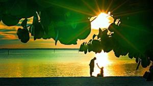 Ponce de Leon Park Sunset