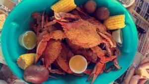 Cooked Blue Crab 2- Peace River Seafood