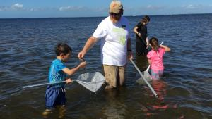 Photo of CHEC wading tour at Ponce de Leon Park with guide teaching boy about item they found in water