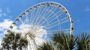 A Myrtle Beach vacation is bound to surprise you