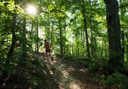 Raccoon Mountain Marathon