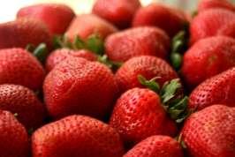 Strawberry Festival Moulton
