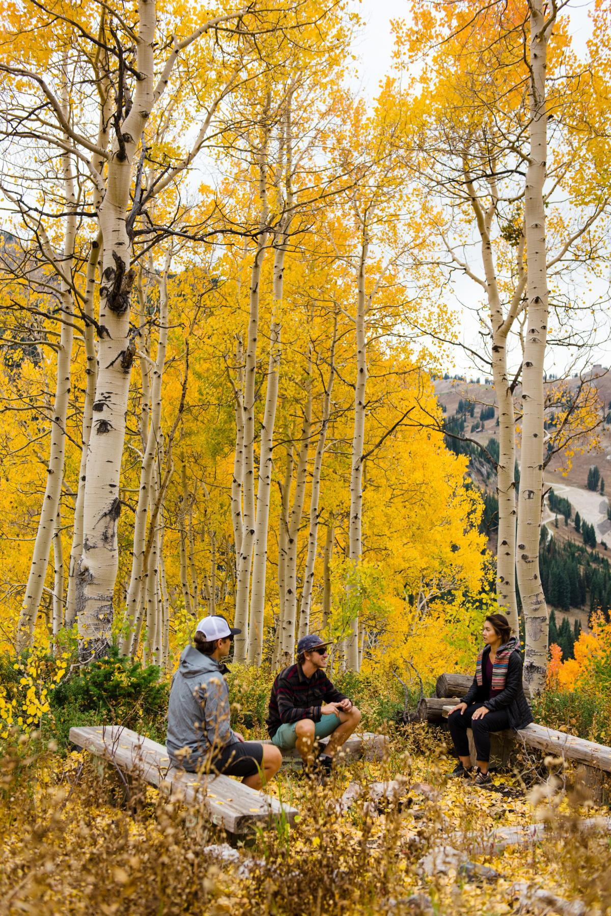 Grab some friends and hike Little Cottonwood Canyon