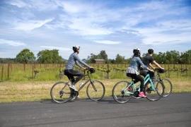 Biking the Napa Valley Vine Trail
