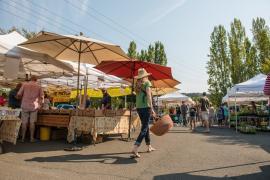 Napa Valley Farmers Market