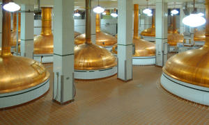 Coors Brewery Tour Kettles