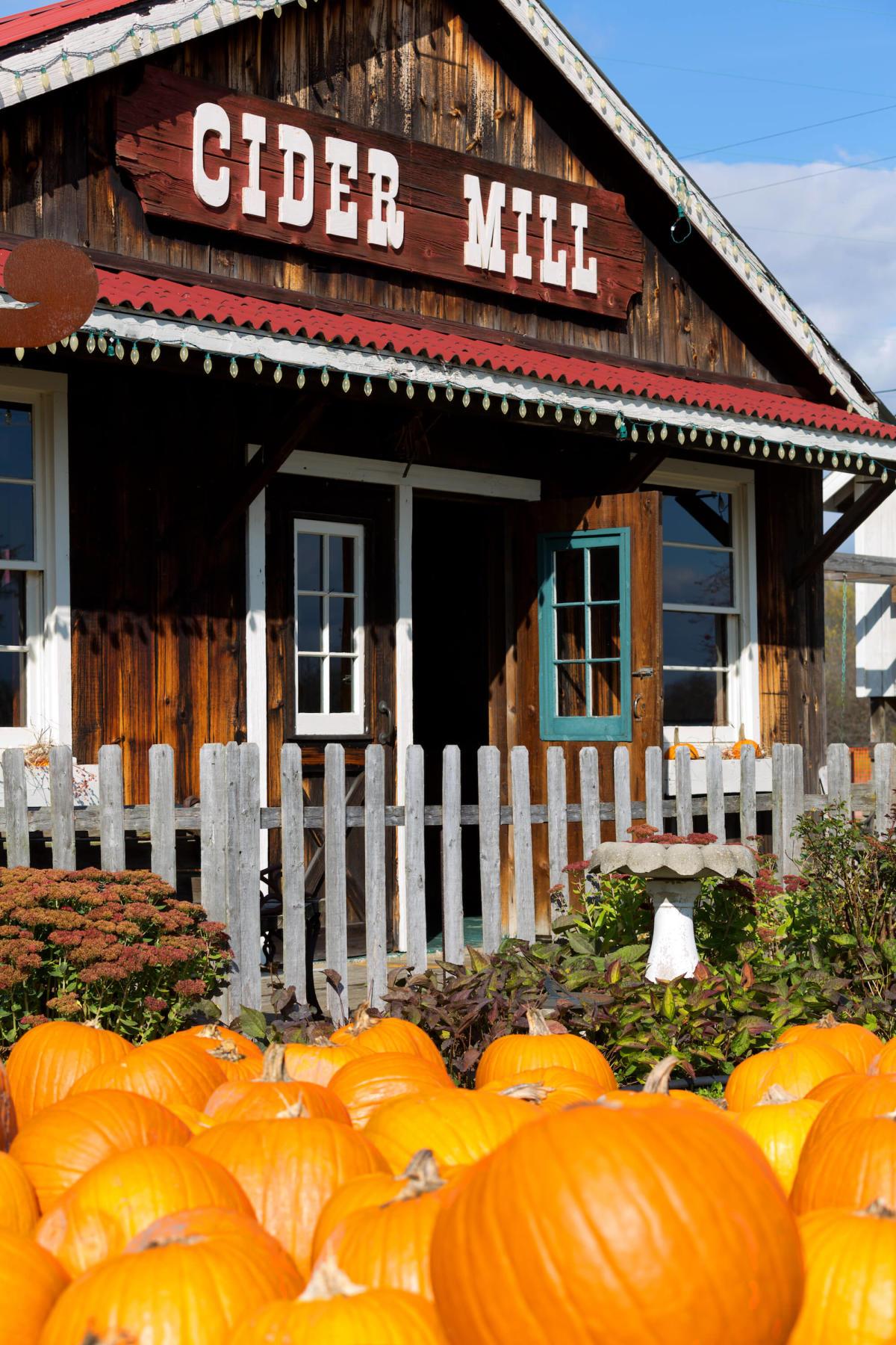 Bayne's Apple Valley Farm