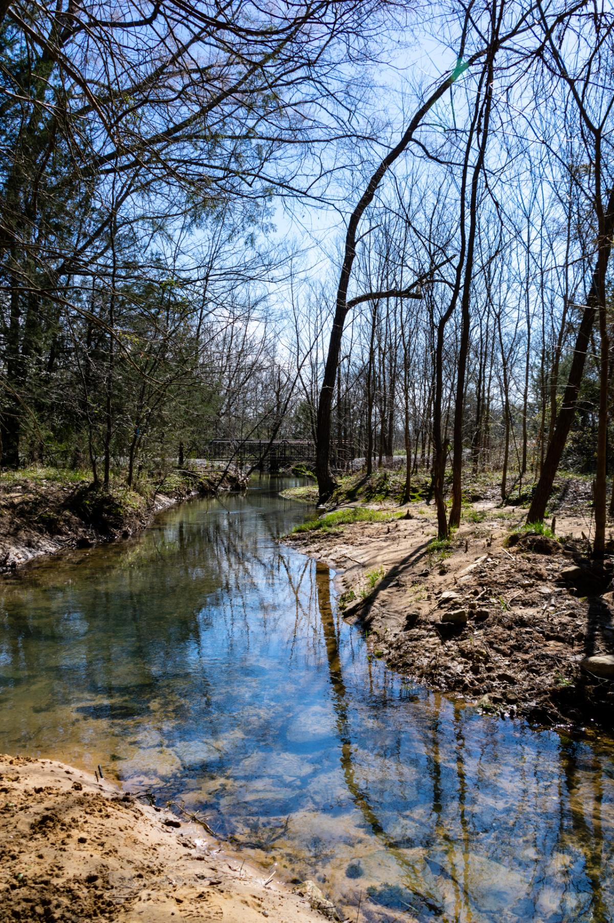 Bridge at Beth Spring Nature Preserve