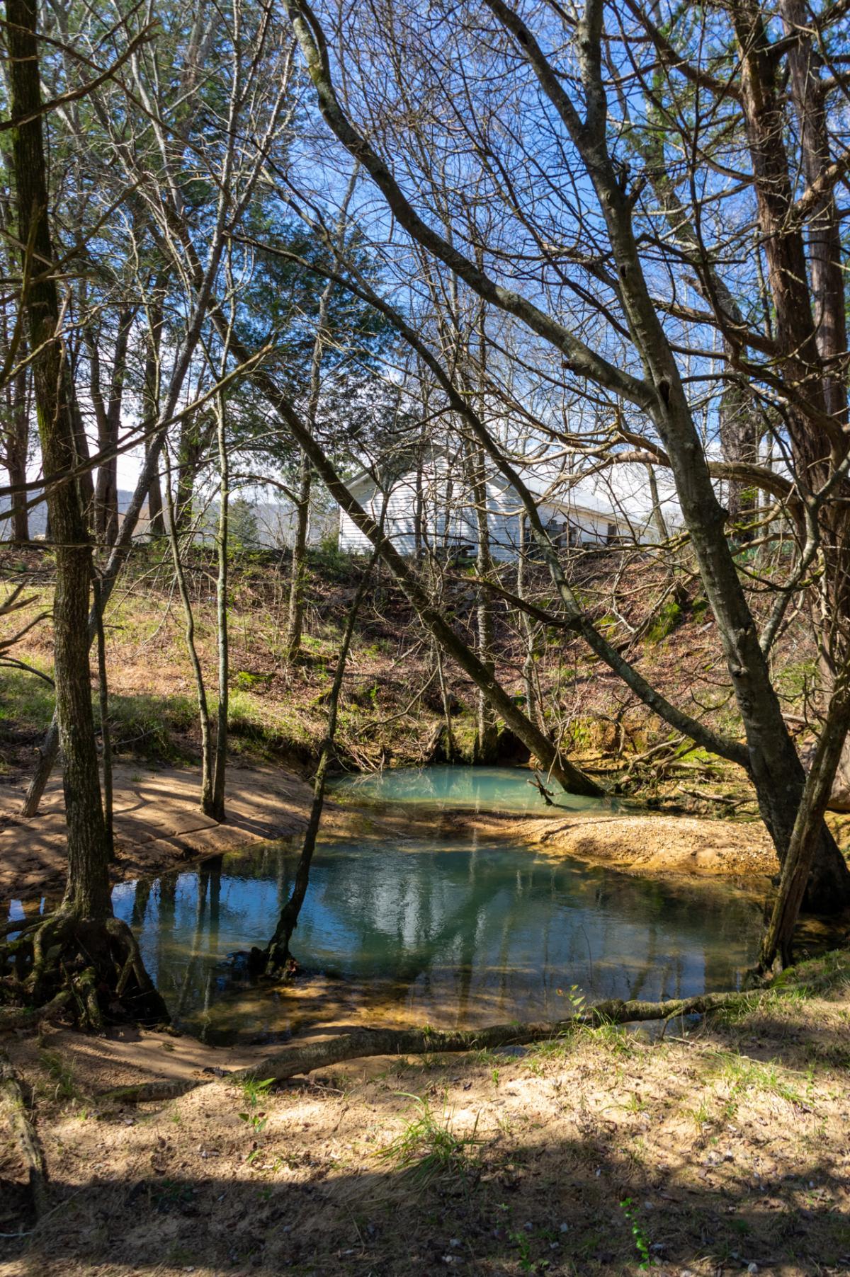 Bethel Spring Nature Preserve
