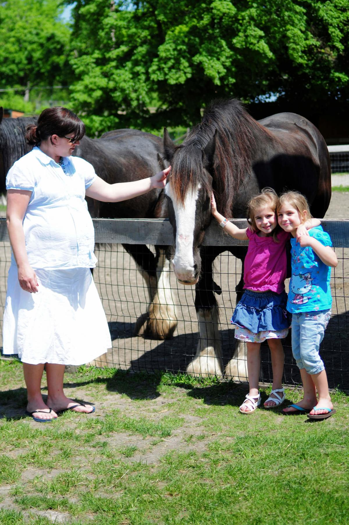 Mom and Daughters Petting a Horse at the Saginaw Children's Zoo