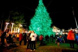 Christmas tree in Maine at night