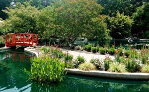 NHC Arboretum bridge