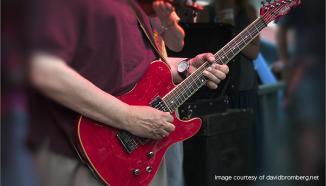 David Bromberg Guitar