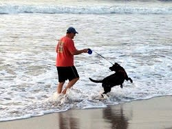 Man and dog at the beach