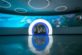 After cruise guest complete their check-in, they experience the newly installed light tunnel and interactive video screen.
