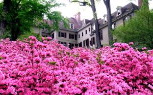 Winterthur Museum, Garden and Library - Mansion