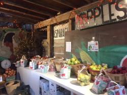 Apples at Hilger's Family Farm